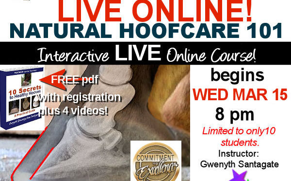 NATURAL HOOFCARE LIVE ONLINE AGAIN!